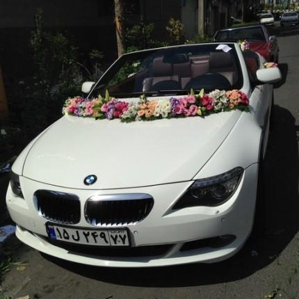 اجاره ماشین در تهران با گل خطی