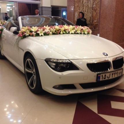 مدل ماشین عروس شیک کروک