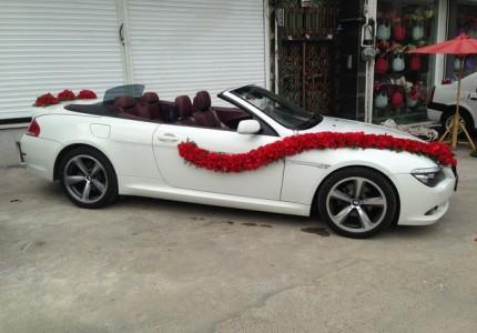 مدل ماشین عروس bmw