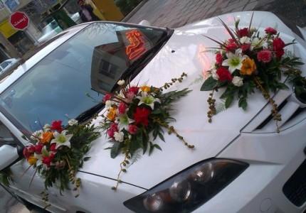 مدل ماشین عروس شیک